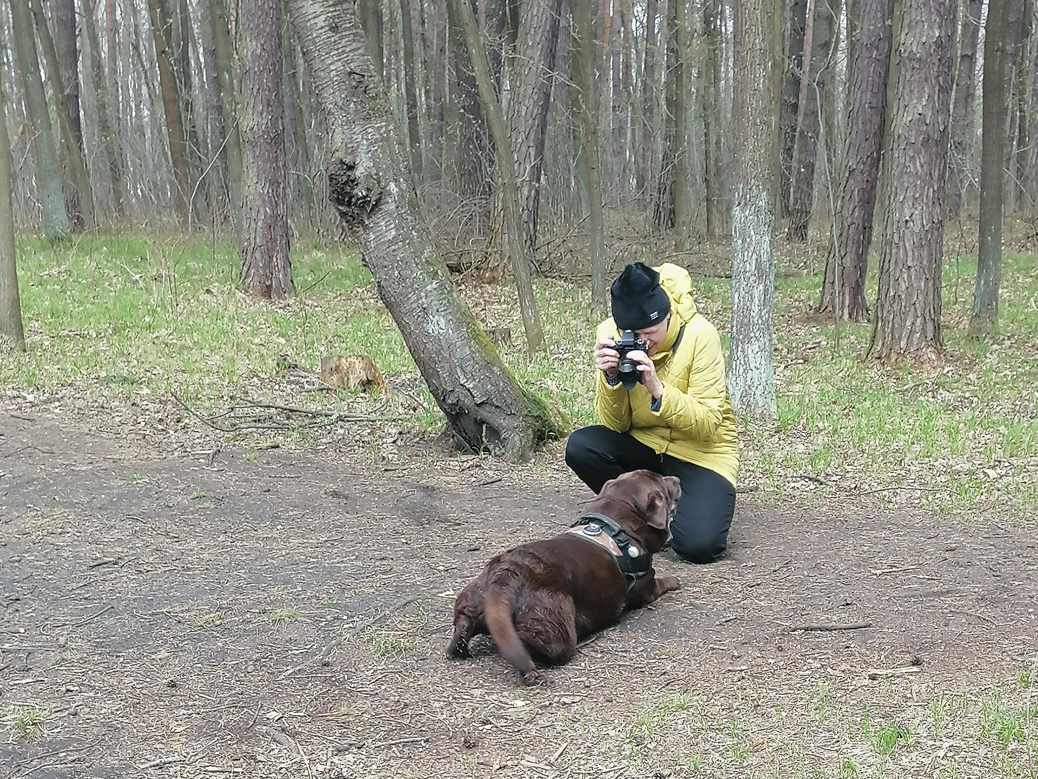 Plenerowe warsztaty fotograficzne Klub Seniora Platyna- i - zdjęcie pokazuje las i uczestników fotografujących psa na leśnej polanie
